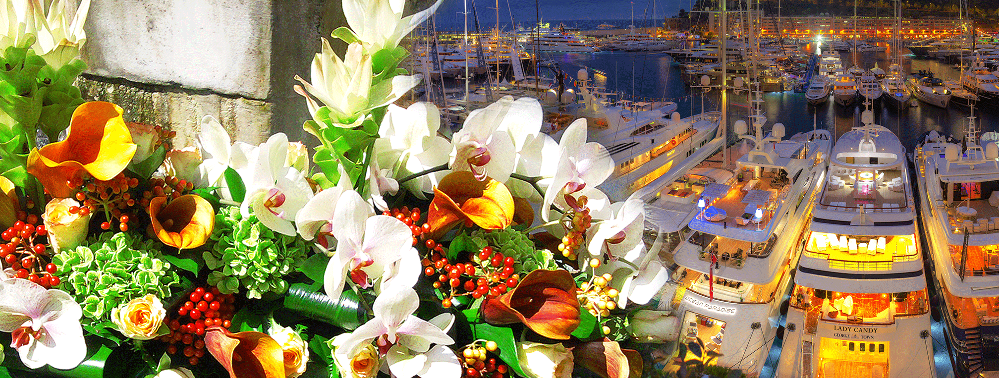 Amaryllis English Florist For Yachts In Monaco Antibes Cannes Saint Tropez La Ciotat Golfe Juan Imperia San Remo And Genova
